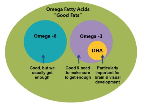 Omega Fatty Acids